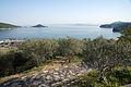 120px-Shodoshima_Olive_Park_Shodo_Island_Japan12bs3.jpg